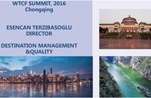 Shared Economy and Tourism City Development